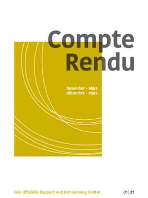 2021 05 05 Compte Rendu 1