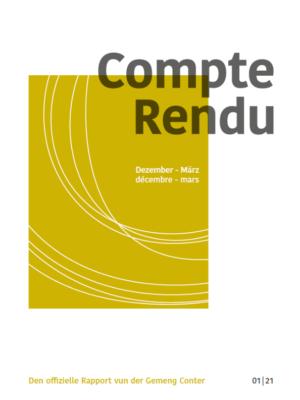 2021 05 05 Compte Rendu 1 ENG